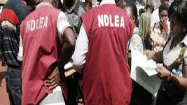Photo of NDLEA promotes 1,311 staff