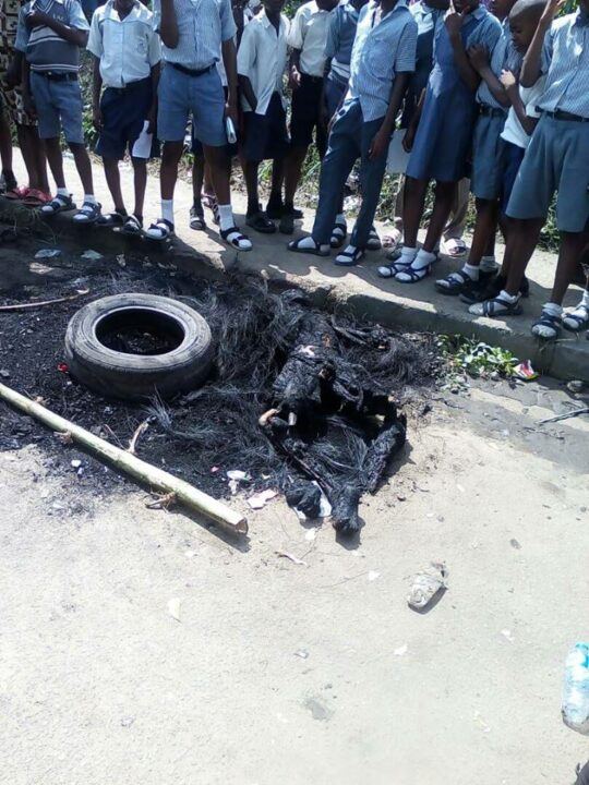 Photo of Angry Mob Burn Armed Robber To Ashes In Front Of Children In Calabar
