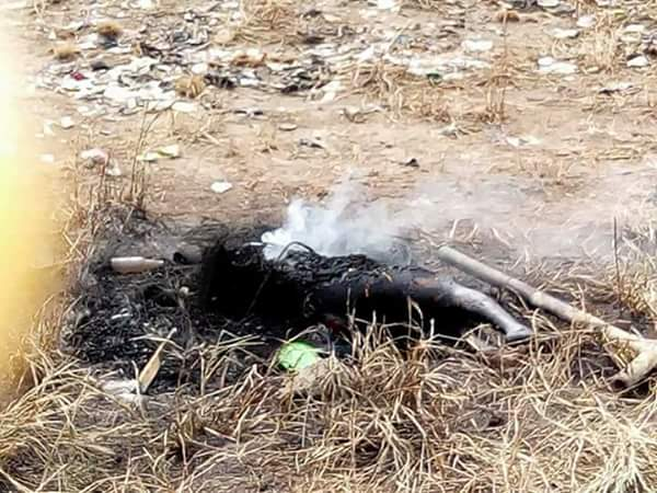 Photo of 'Mad' Woman Caught With Human Body Parts In Delta Burnt By Youths