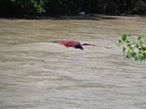 Photo of Four feared dead as truck pushes bus into river in Ogun