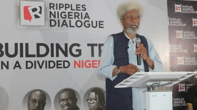 Photo of Don't Vote Old People Into Office -Soyinka Tells Nigerian Youths