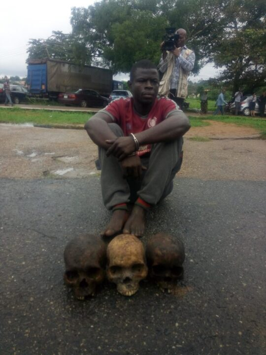 Photo of Oyo Police Arrest Man With 3 Human Skulls In Ibadan