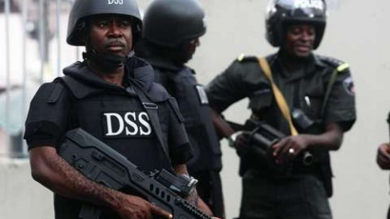 Photo of DSS Arrests PDP Social Media Activist