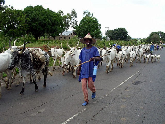 Photo of BREAKING: Fulani Herdsmen Kidnap 3 People On Lagos-Ibadan Expressway