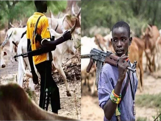 Photo of Herdsmen Carry Arms For Self-defence – Fulani Group Tells Obasanjo