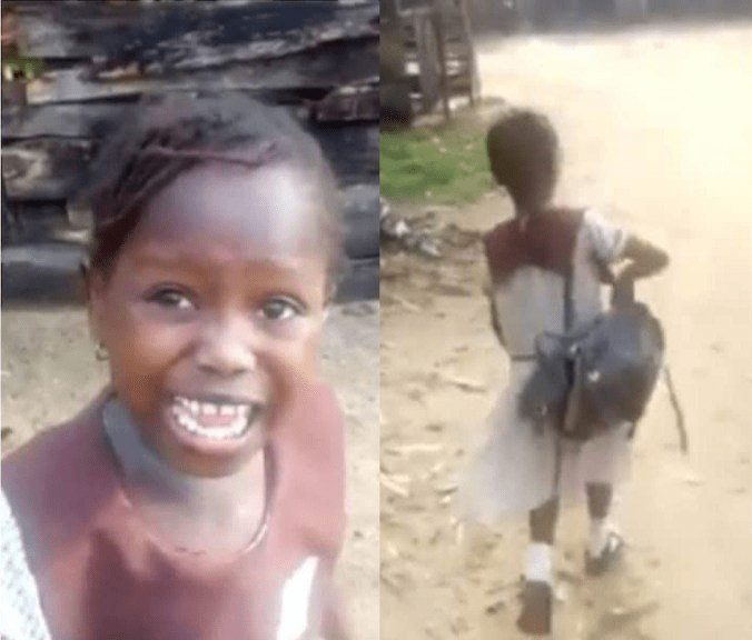 Photo of Success' Viral Video: Delta Demolishes School