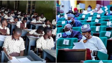 Photo of COVID-19: Reps discloses what schools must do before been allowed to resume
