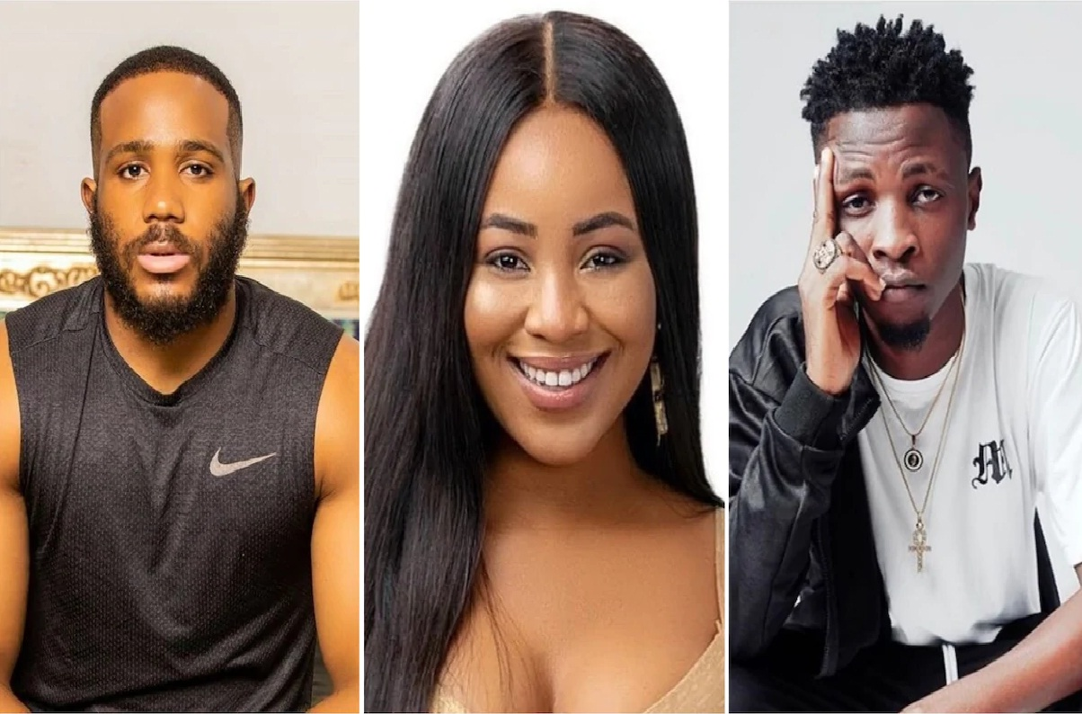 Photo of BBNaija 2020: What Erica told Kiddwaya over Laycon